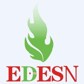 Ledison Technology Co., Ltd. logo