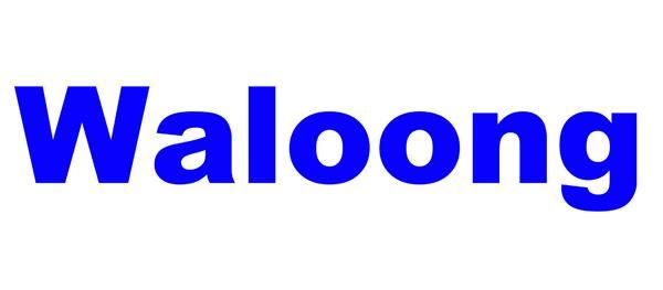 Waloong Electric Instruments Co.,Ltd logo