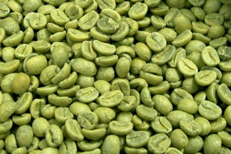 Raw coffee beans,Green arabica coffee, robusta coffee beans