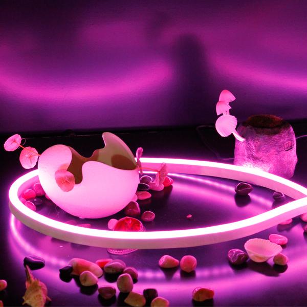 SMD 5 years warranty Decorative Christmas LED Neon Strip Light