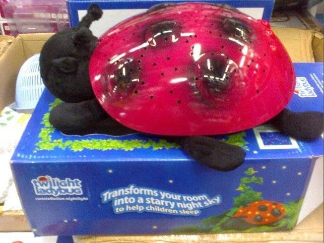 Twilight Ladybug Music Night Light Star Hongkong Stars