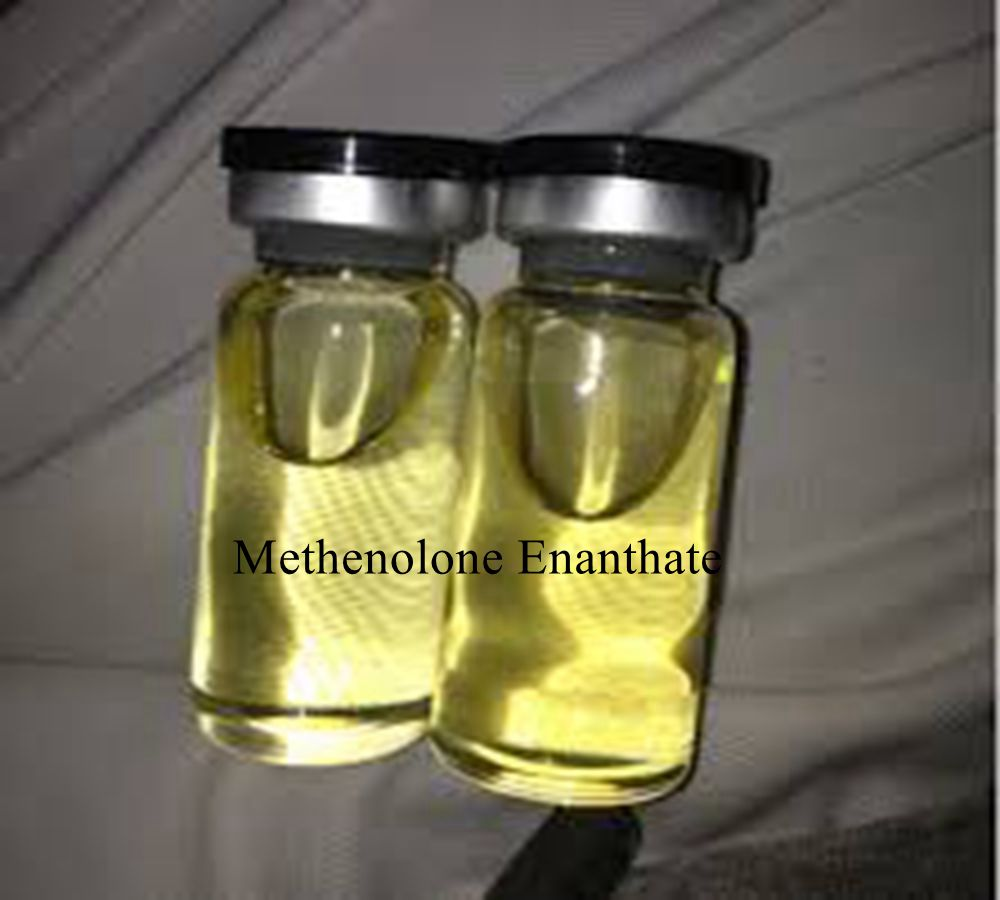 Primobolan Methenolone Enanthate injectable anabolic steroids hormones for body building