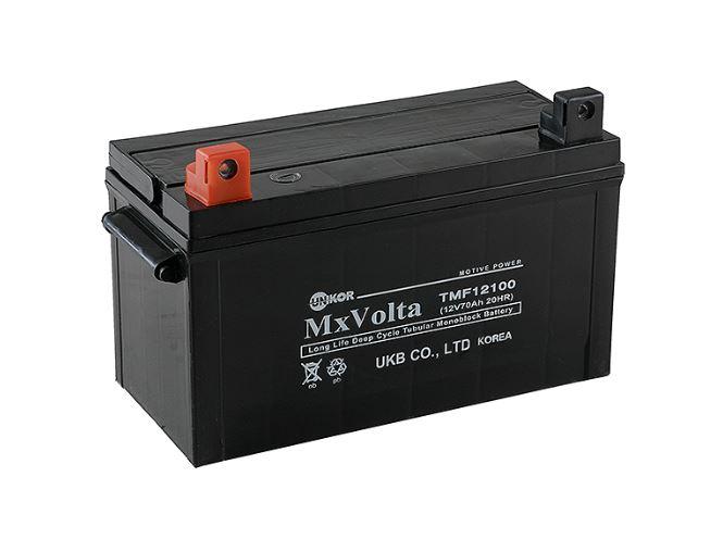 TMF(Tubular Maintenance Free) Series Battery