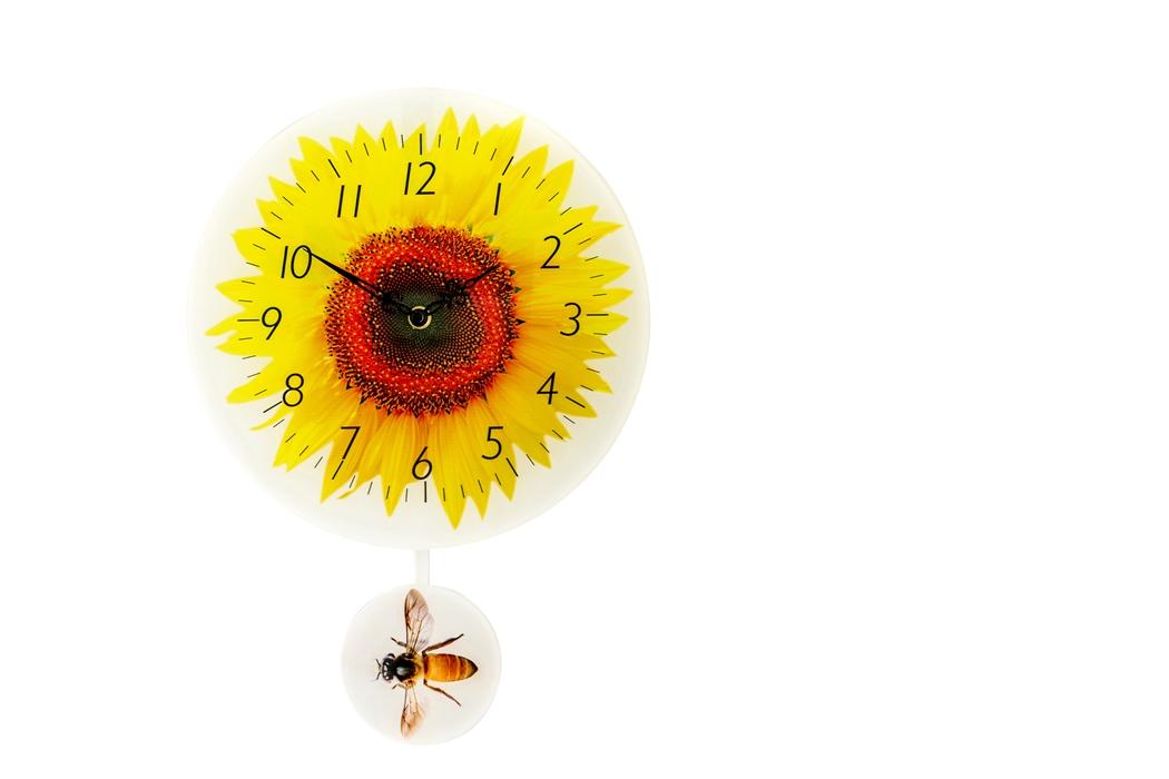 "12"" cartoon sunflower pendulum clock"