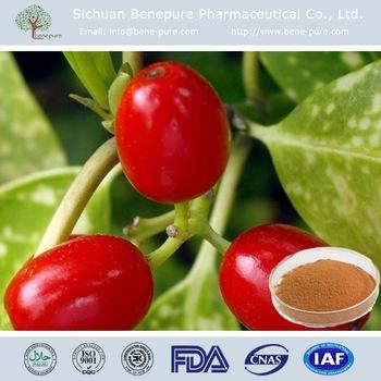 High Quality Natural Fruit powder Wolfberry Powder,BENEPURE