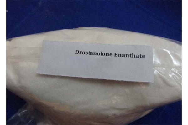 China 99% Purity Muscle Buidling Steroid Powder Drostanolone Enanthate