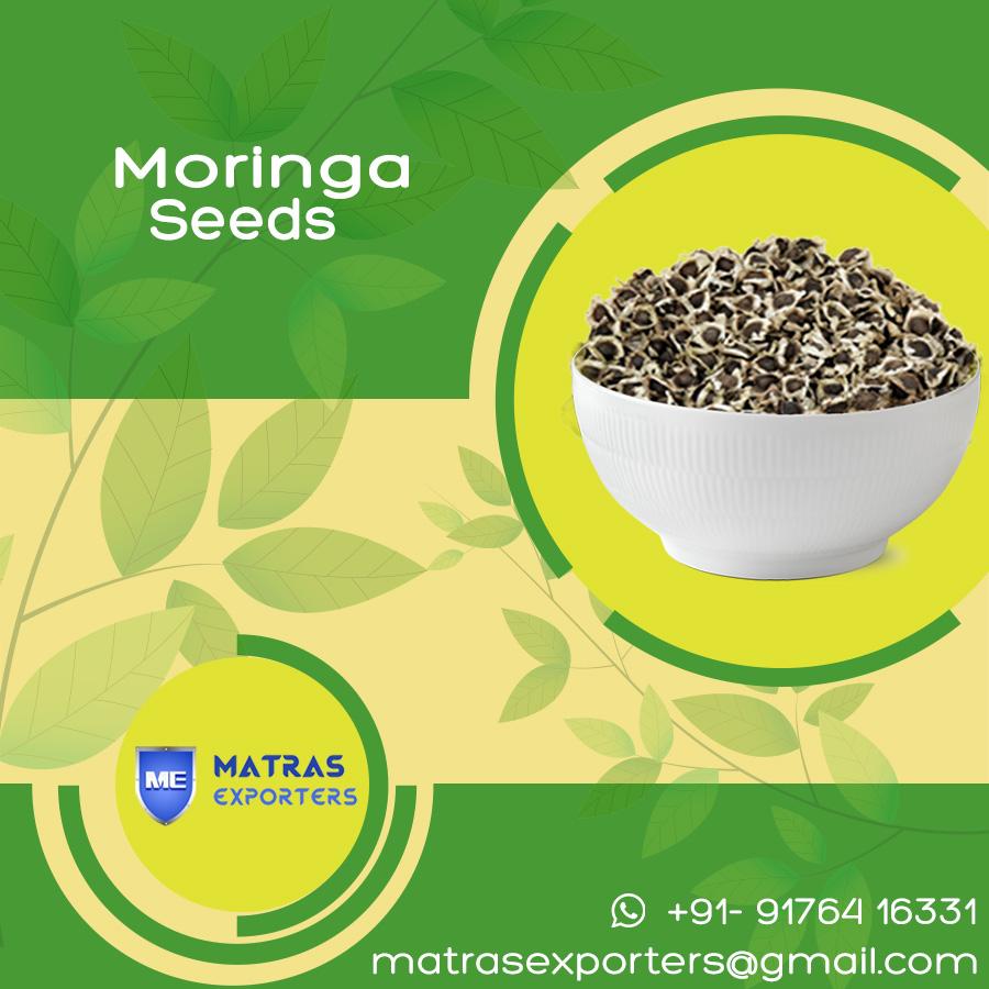 Moringa seeds from India