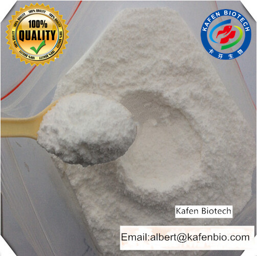 Professional Weight Loss Drug Supply Synephrine Raw Powder