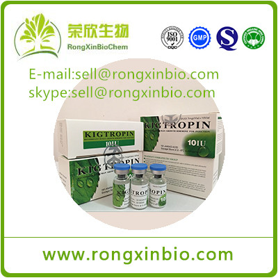 Hot sale high purity Hot sale Kigtropin HGH 100iu/kit Human Growth Hormone Muscle Gain For Muscle Ma