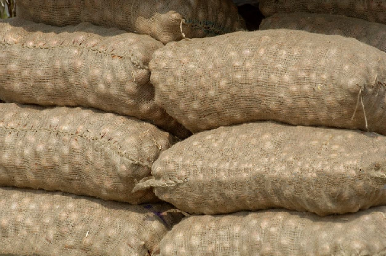 Jute Hessian bag suitable for onion, potato and other similar food grain packing