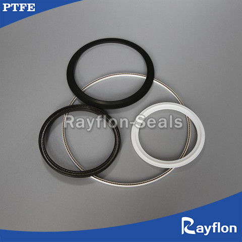 Sping energized PTFE seals