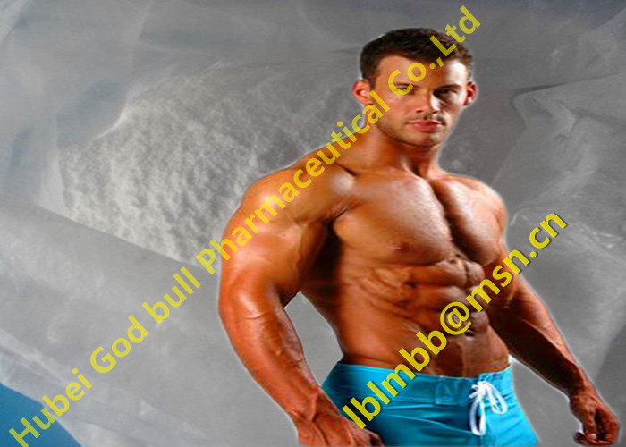 CAS: 57-85-2 Hot Sale Injectable Anabolic Steroids Testosterone Propionate Powder For Bodybuilding