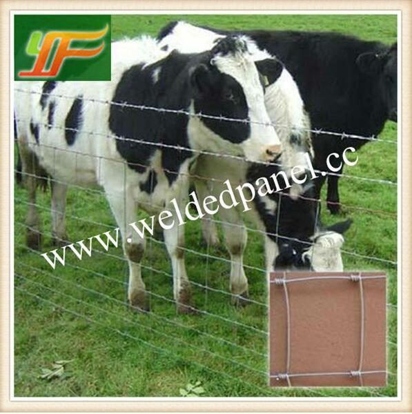 Australia Galvanized Cattle Horse Sheep mesh Field Cattle Fence