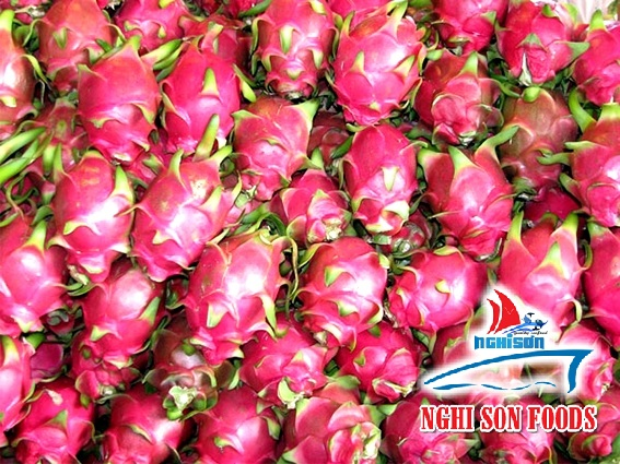 Vietnam Dragon Fruit (+841214627828)