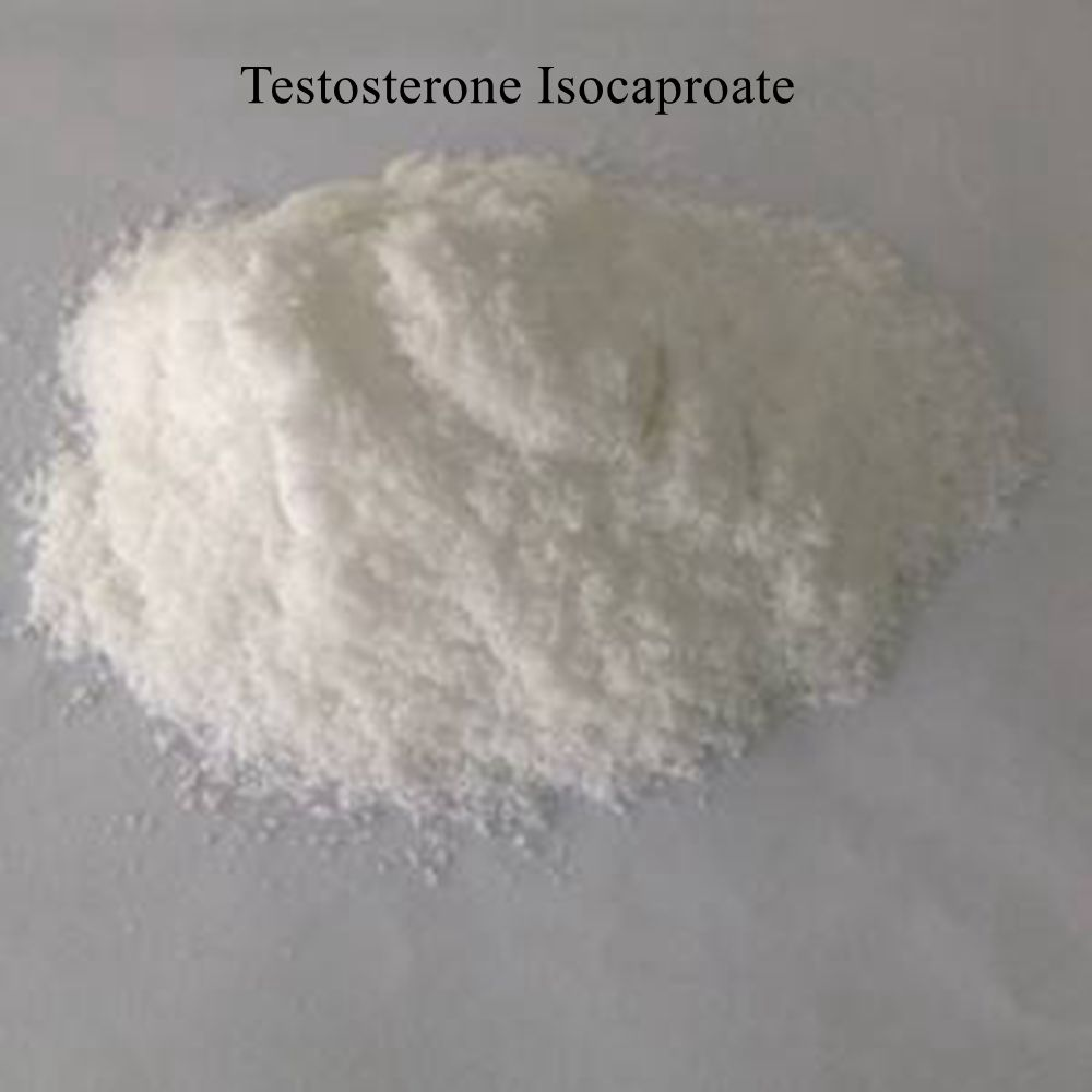 Testosterone Isocaproate anabolic steroids hormones for body building