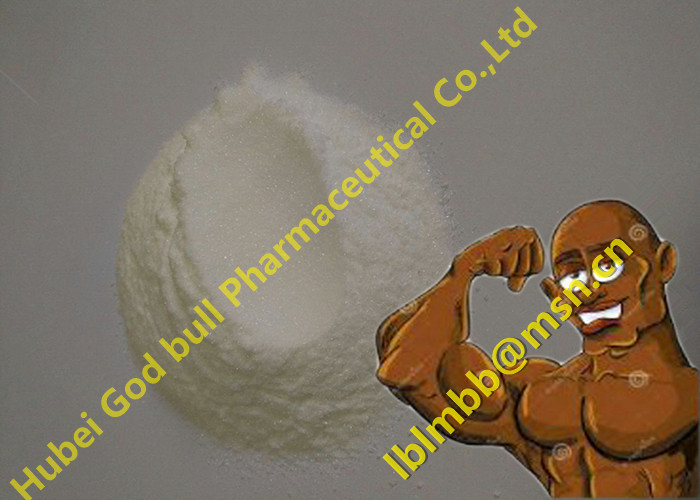 Oral Anabolic Steroids Anastrozole Arimidex Powder Bodybuilding Supplements