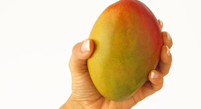 African Mango Varieties - Kent, Keith, Haden, Tommy Atkins