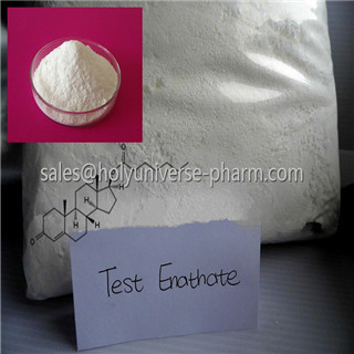 Testosterone enanthate male hormone for bodybuilding,Cas 315-37-7,TE hormone