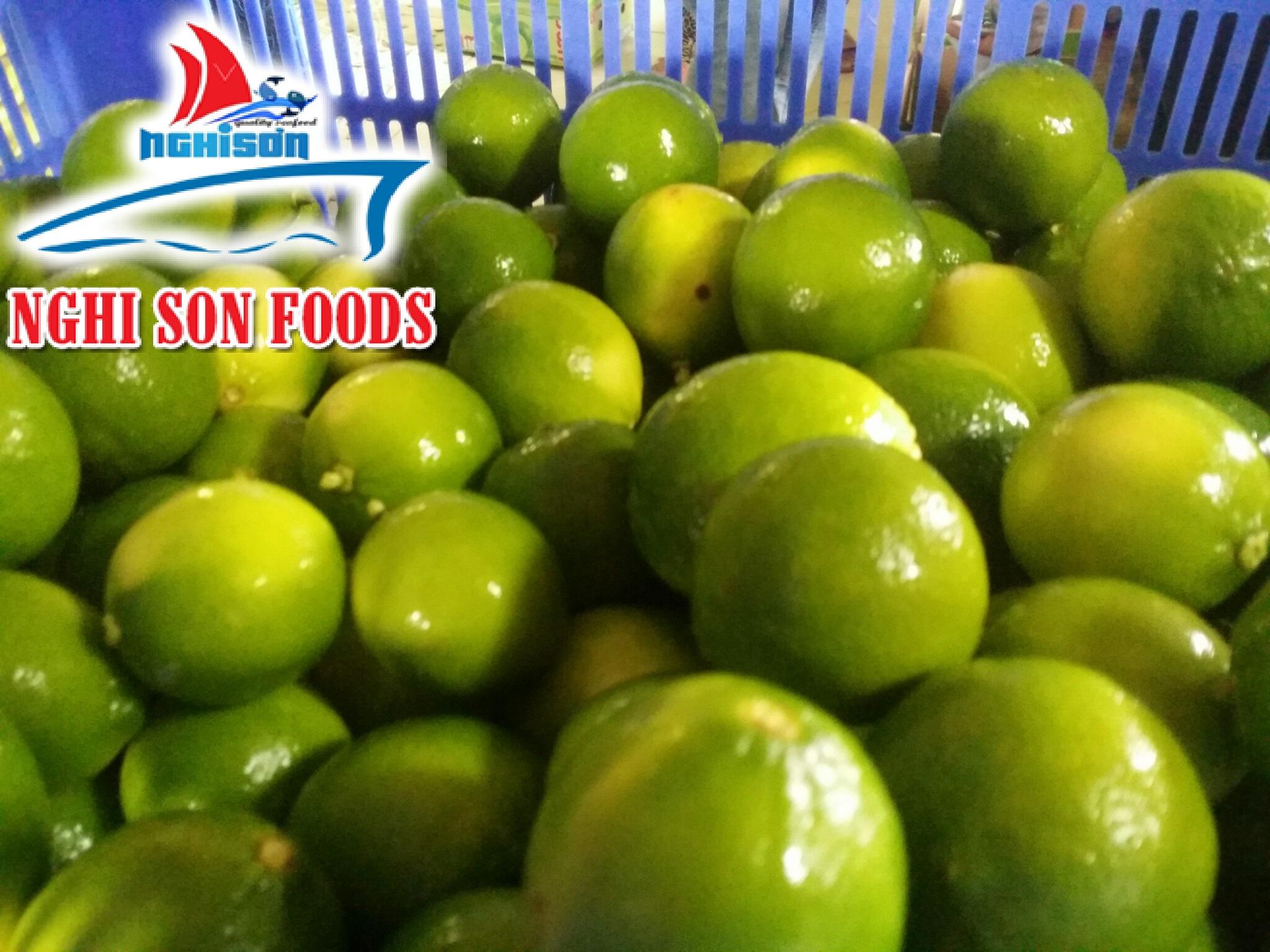 Fresh Seedless Lime (+841214627828)