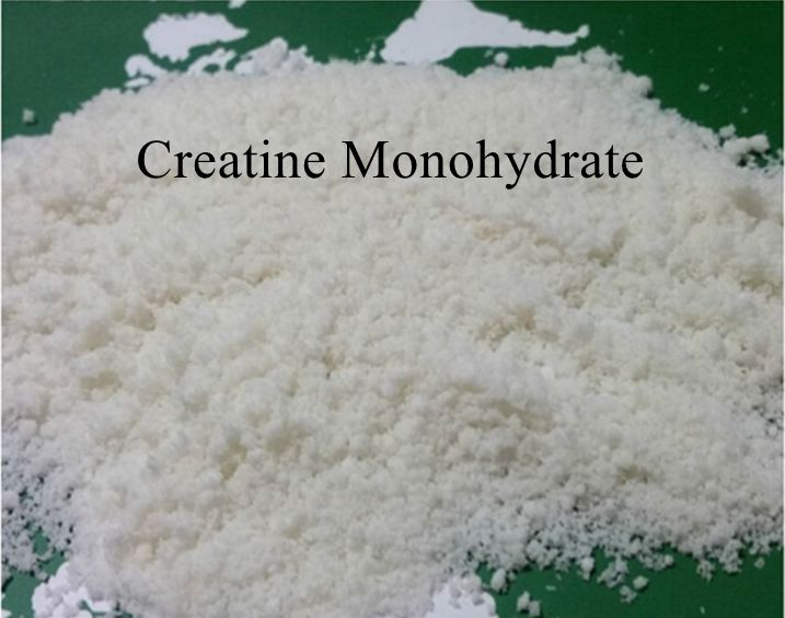 Creatine Monohydrate Amino Supplement Sports Nutrition