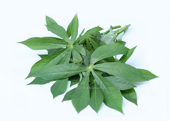 Frozen Cassava leaves