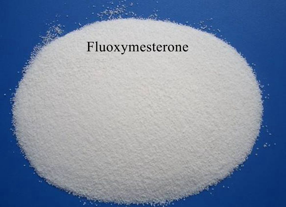 Halotestin Fluoxymesterone anabolic steroids hormones for body building