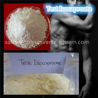 Testosterone isocaproate for bodybuilding Cas 15262-86-9