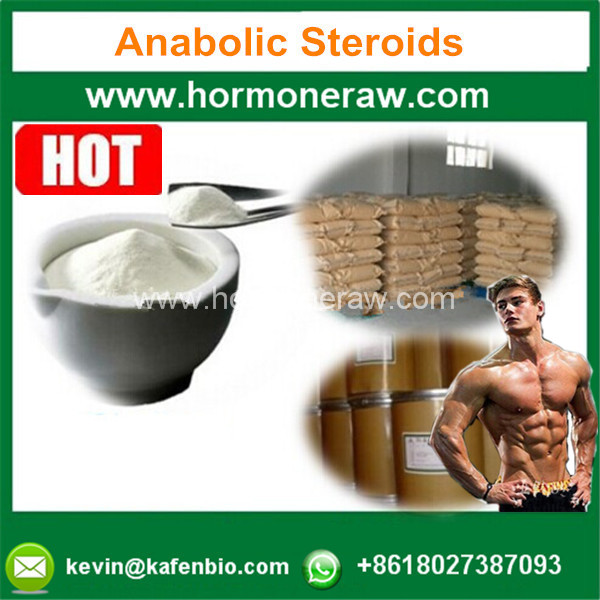 Muscle Building Steriods Hormone Powder Testosterones Base 58-22-0