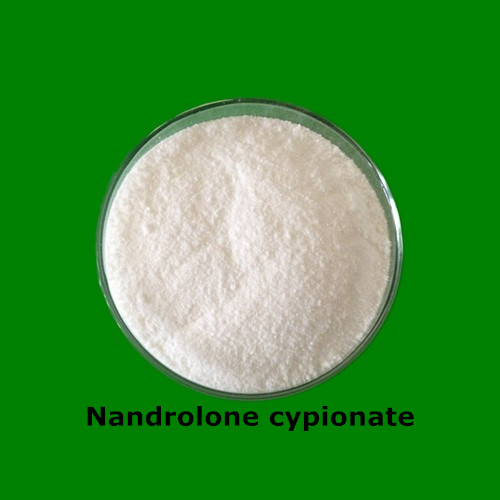 Bulking Cycle Steroids Nandrolone Cypionate