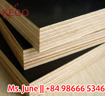 BEST PRICE BEST QUALITY A/A, A/B Film face Plywood