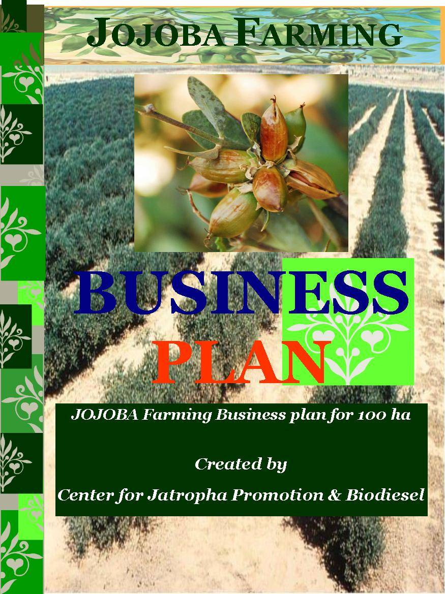 moringa oleifera biodiesel business plan