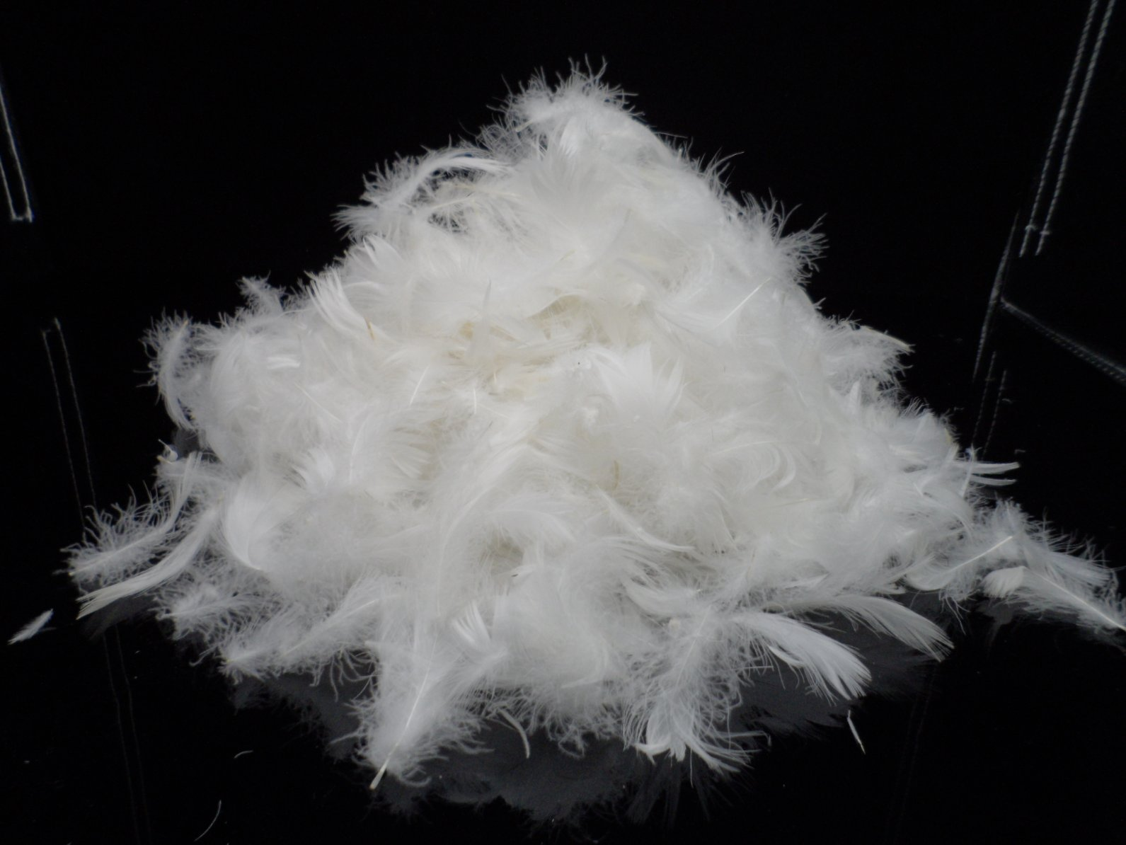 Washed Duck feather 2-4cm