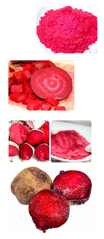 Natural Beet root juice powder E2~E4 (newoly)