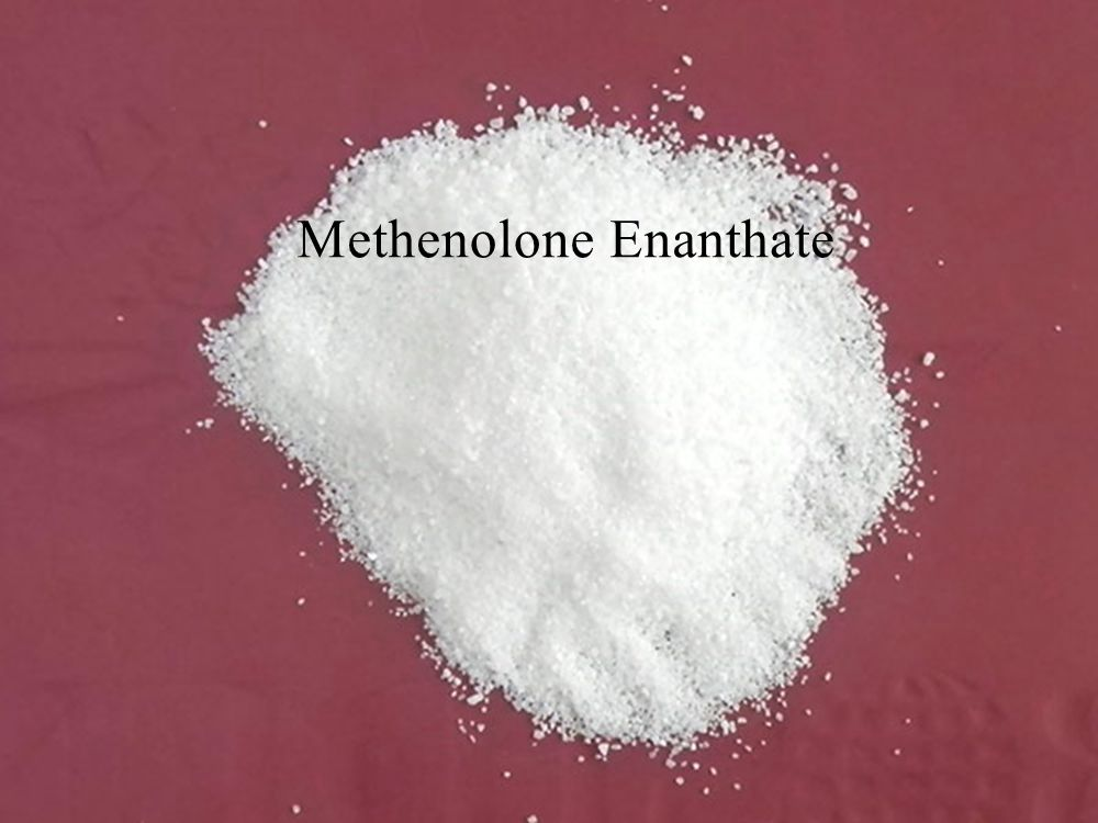 Primobolan Methenolone Enanthate anabolic steroids hormones for body building