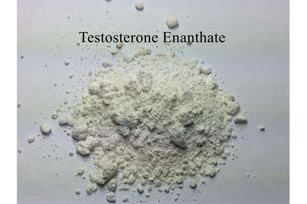 Testosterone Enanthate anabolic steroids hormones for body building
