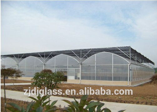 Large glass agricultural greenhouse