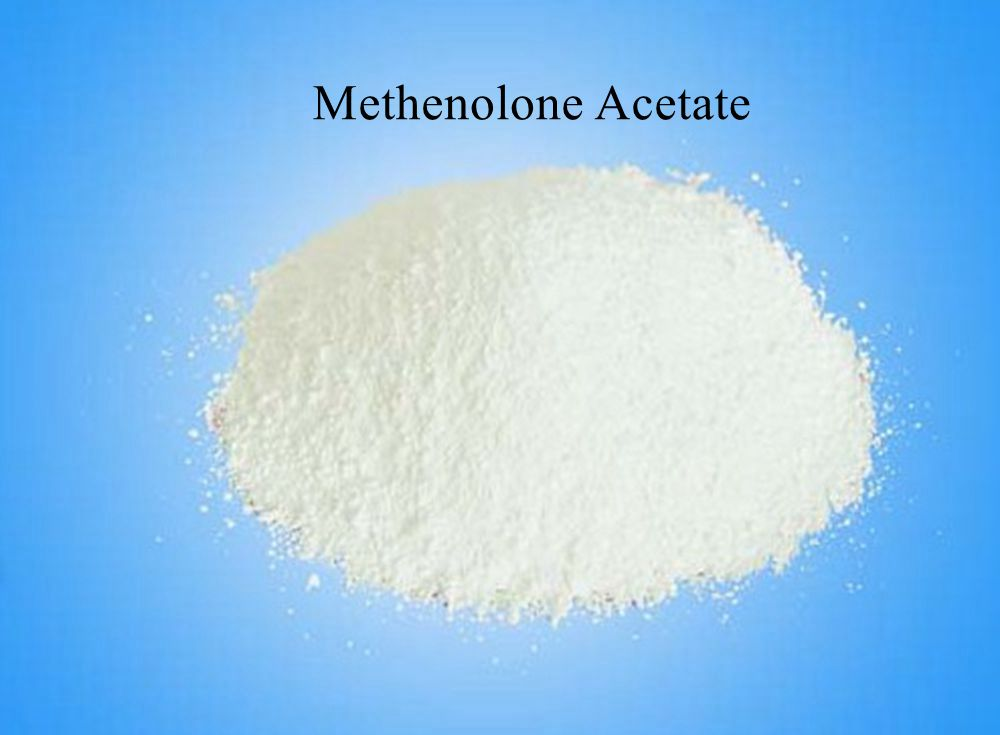 Primobolan Methenolone Acetate anabolic steroids hormones for body building