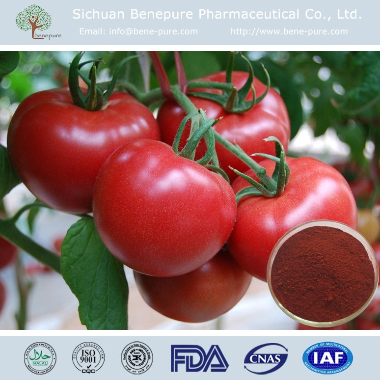 Lycopene 10%-80% from natural tomato for cosmetics usage BENEPURE