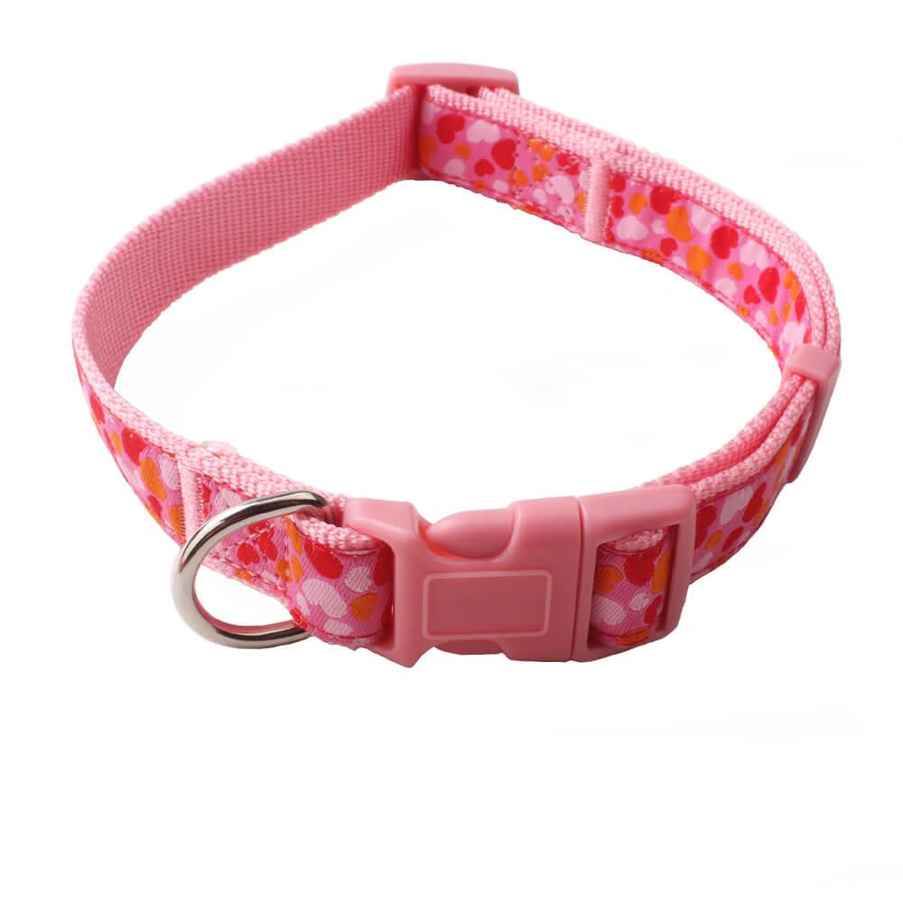 Custom Dog Collar: Hot Sale Personalized Dog Collar Supplier