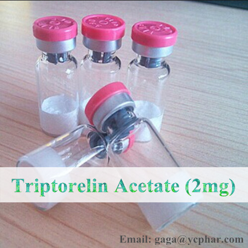 Most Effective Lyophilized Powder Decapeptyl Peptides Triptorelin for Men Bodybuilding