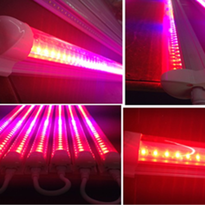 Grow light T8 LED 4FT 22W housing Aluminum Alloy+PC 2600-2800k 70-80LM With 5 years warr
