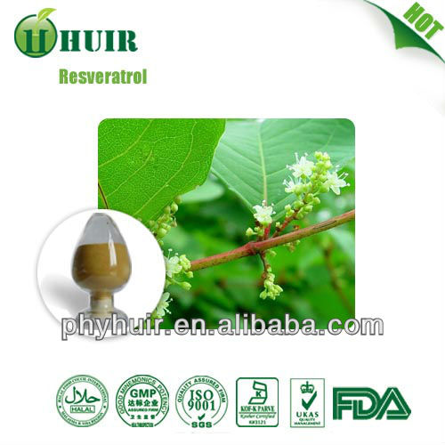 50% Trans Resveratrol Polygunom Cupsidatum Extract