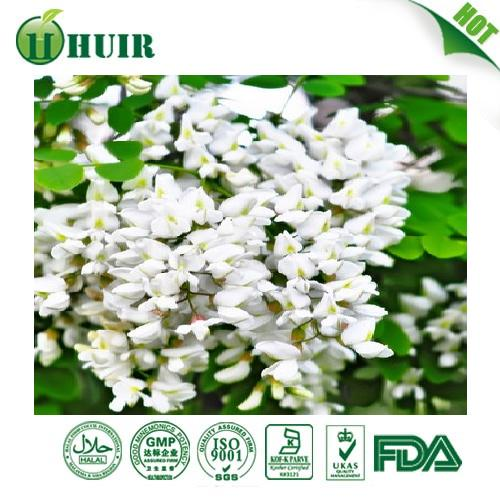 98% EP8.0/DAB natural Rutin powder