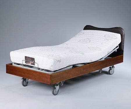 Electric Adjustable Bed RG-500
