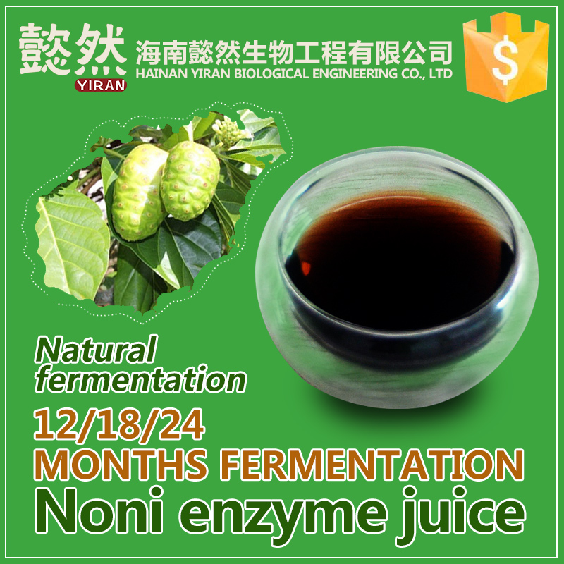 Factory Supply Best selling Noni Concentrate Juice