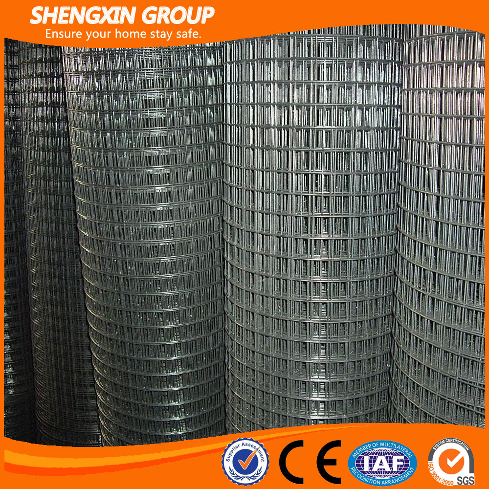 Galvanized welded wire mesh with low price