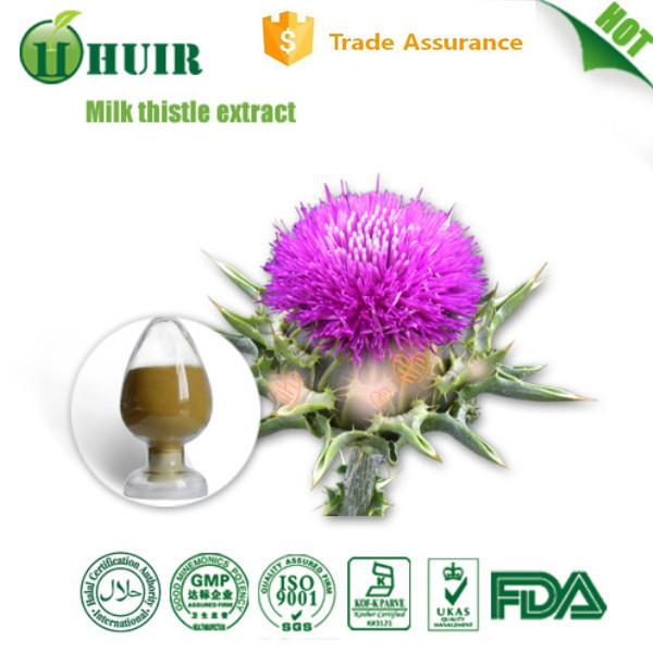 Milk thistle seed extract 80% silymarin 30% silybin/isosilybin