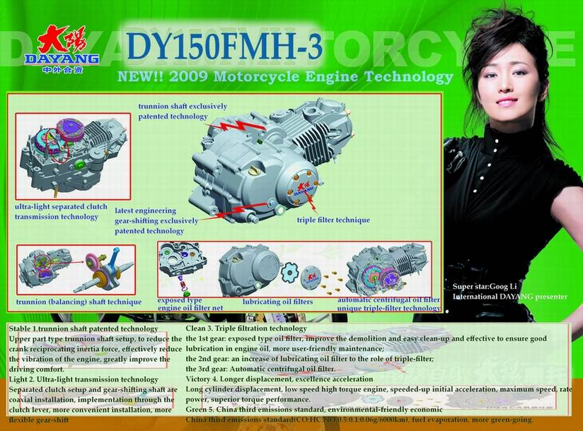 DAYANG 9th serie motorcycle engine