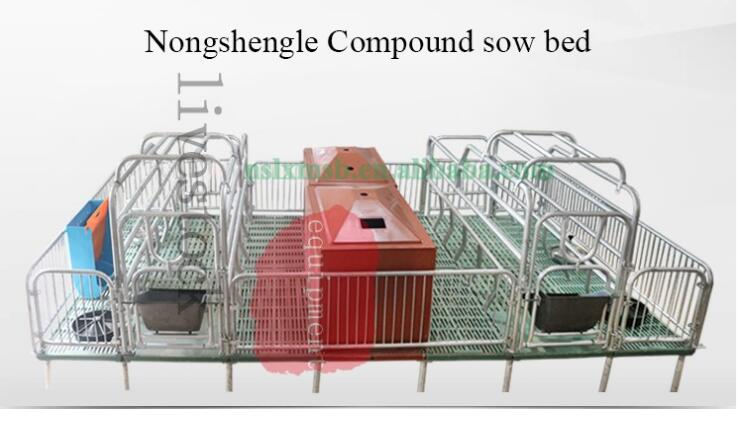 Strengthened Breeding cage for farm pig