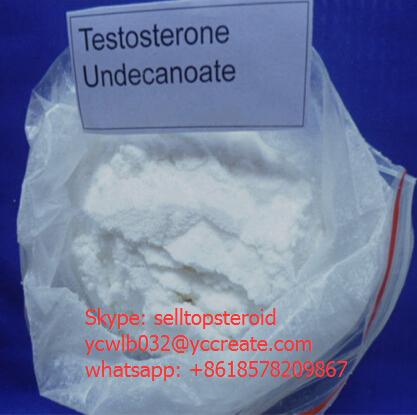 Bodybuilding Raw Steroid Powder Testosterone Undecanoate